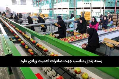 صادرات از کارخونه
