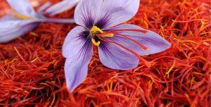 کود کامل زعفران