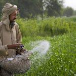 خرید کود در افغانستان