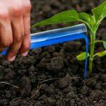 بهترین کود شیمیایی برای رشد سریع گیاهان و درختان